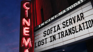 Photo of Sofia Servar – Lost in Translation
